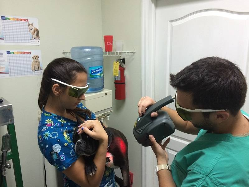 Laser therapy may reduce pain related to inflammation and improving scar healing